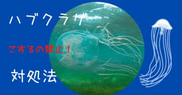 【こするの絶対ダメ!】ハブクラゲに刺された時の対処法【沖縄】